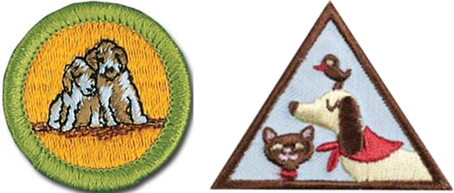boy scout brownie girl scout badge