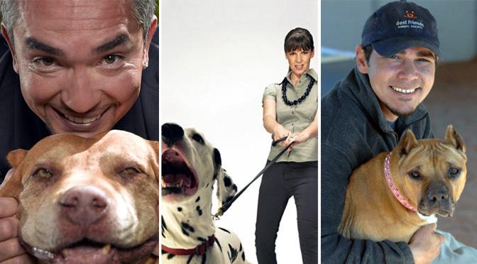 dog whisperer me or the dog dogtown fmk