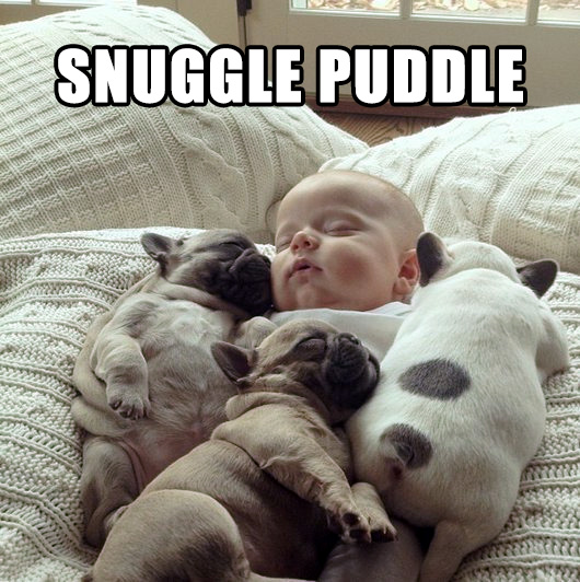 snuggle puddle