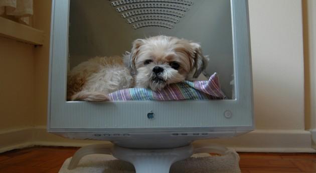 DIY-computer-bed