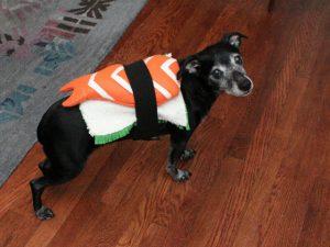 DIY-sushi-costume
