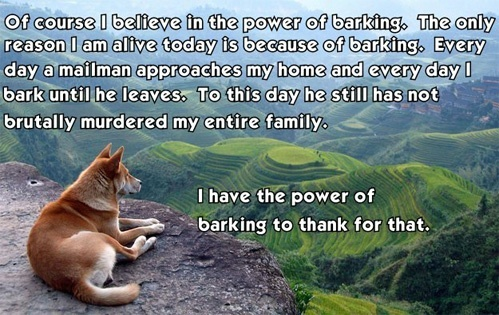 the power of barking dog philosophy