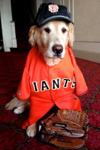 Henry_SF_Giants