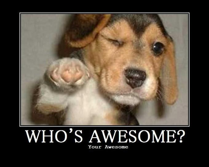 http://knowyourmeme.com/photos/66552-whos-awesome-youre-awesome-sos-groso-sabelo