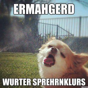 http://weknowmemes.com/2012/06/ermahgerd-dog/