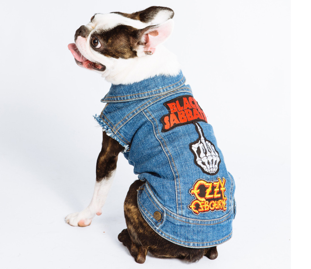 nostalgia metal head fashion dog
