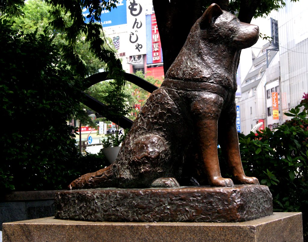 hachiko statue shibuya train station japan