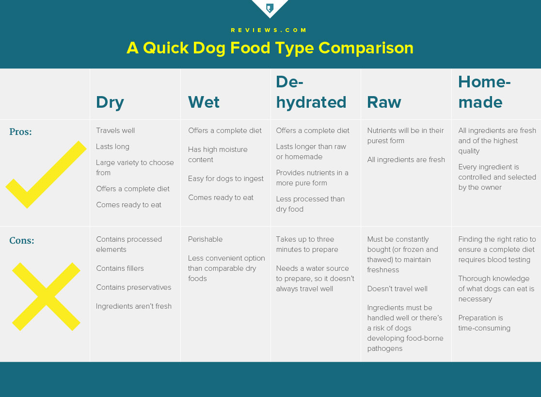 The Truth About Dog Food—an Exposé Every Dog Lover Needs to Read ...
