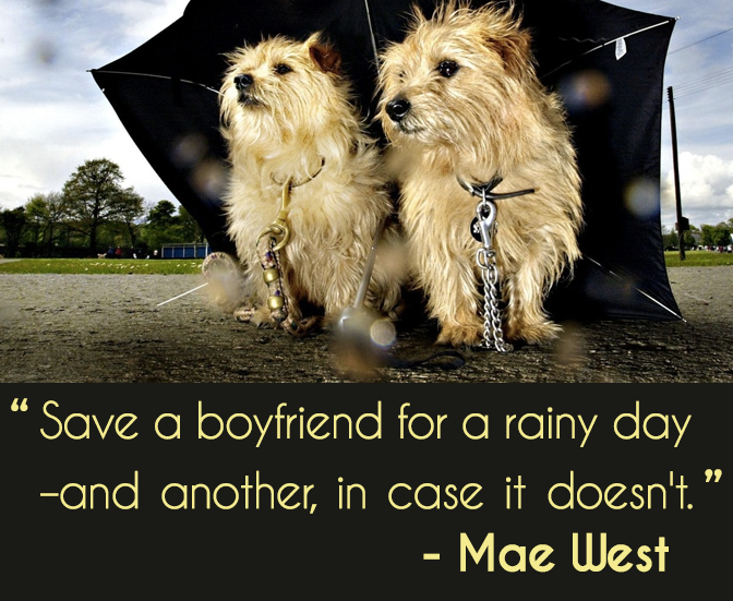 terrier quote mae west