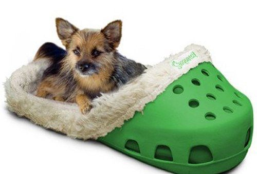 11 Insane Dog Beds You Never Knew Existed