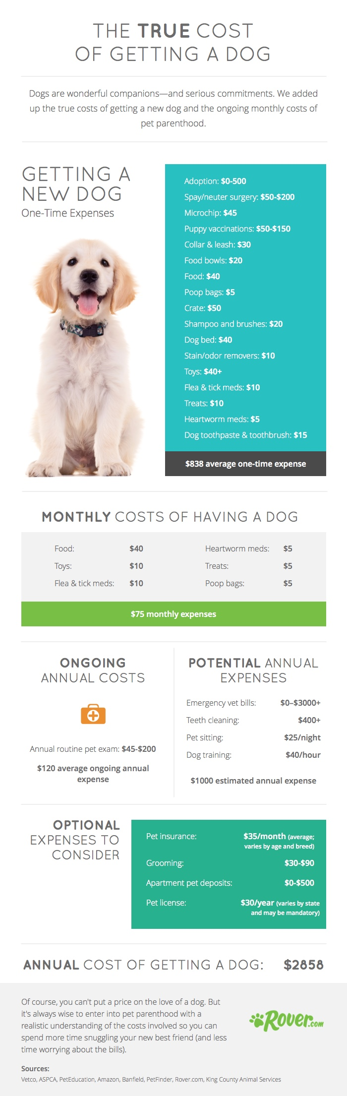 The True Costs of Having a Dog