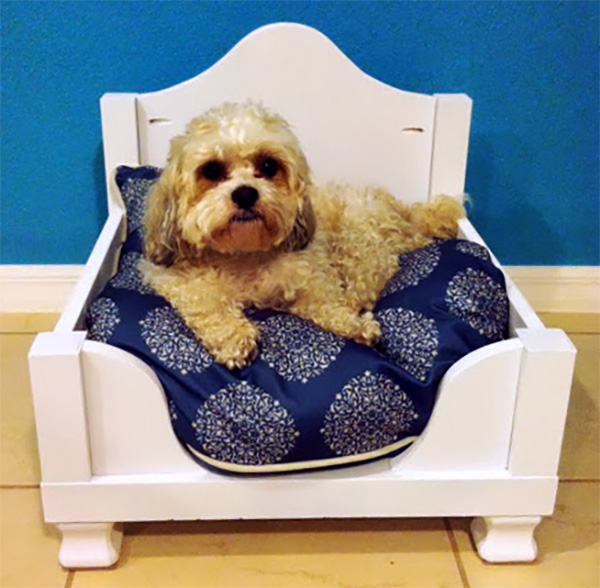 IKEA HACK DOG BED lack table