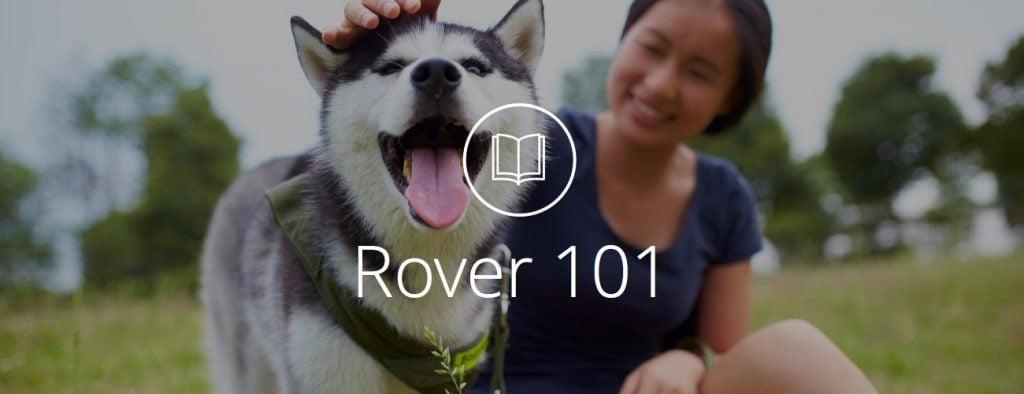 Rover 101 - Headline