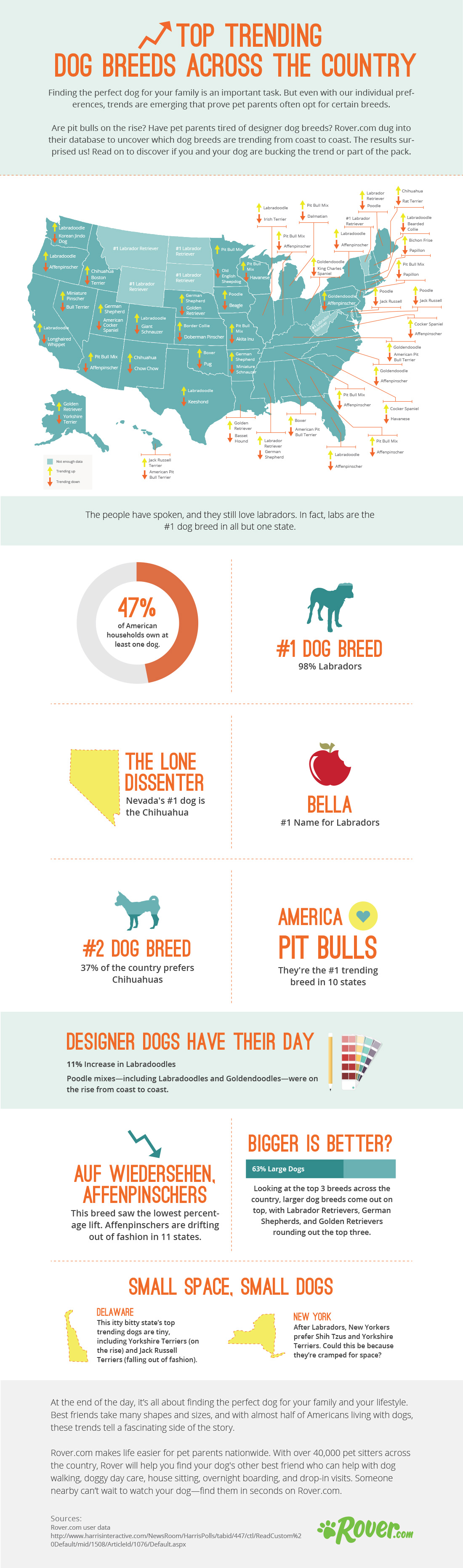 Top-Trending-Dog-Breeds-by-State-Infographic