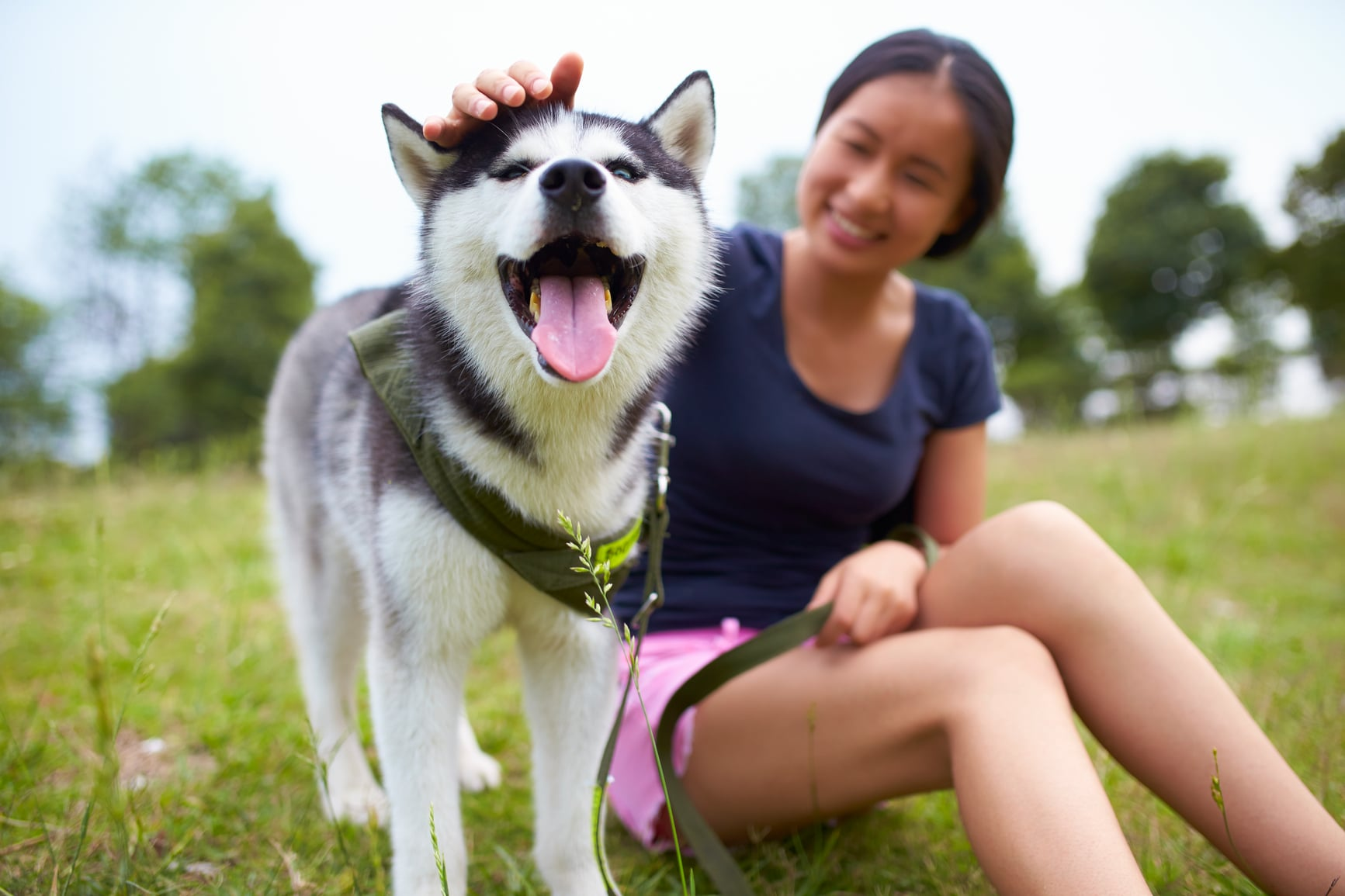 Best Pet Names For Female Dogs