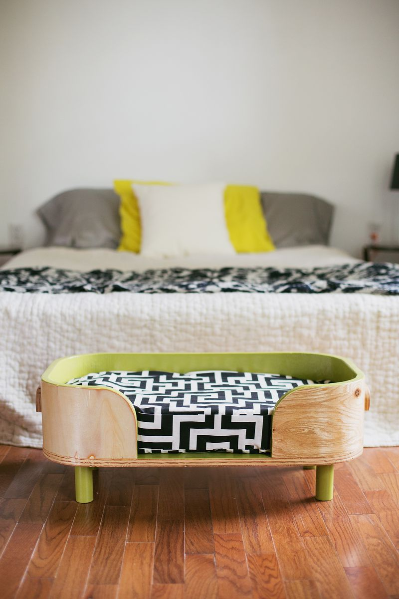 custom modern dog bed