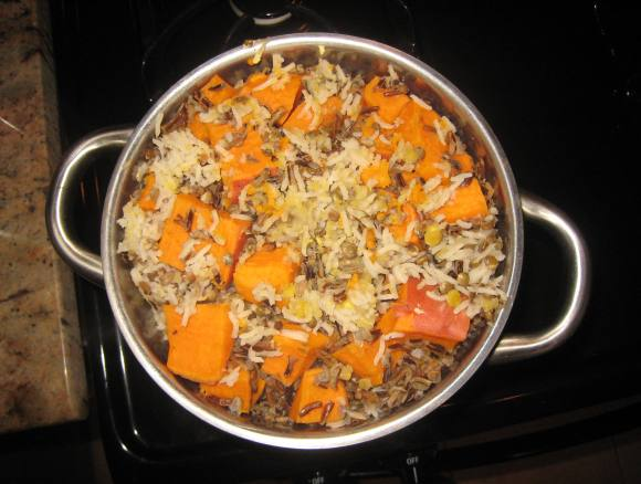 http://www.peta.org/living/companion-animals/say-kibble-vegan-dog-food-recipe/