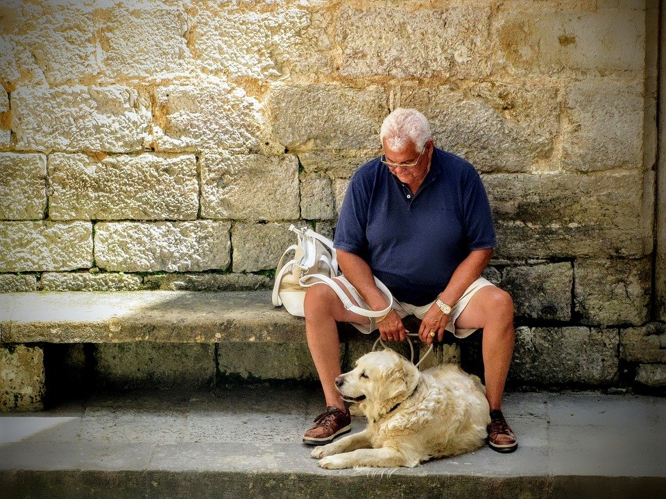 A retiree rests on his walk with a Rover dog.