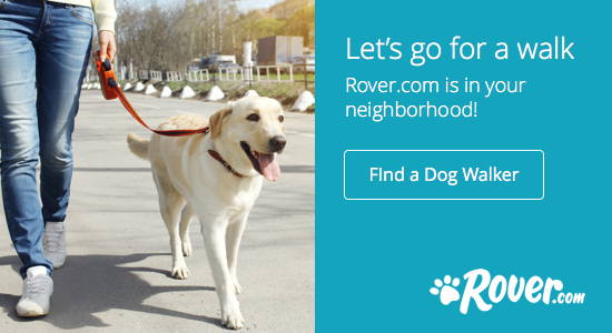 rover-dog-walking
