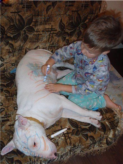 toddler staffie crayola markers