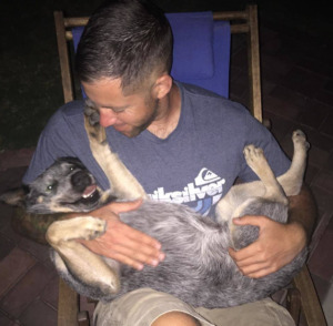 Ben and Ashley Wade had to get their Australian Cattledog's tail amputated after he repeatedly attacked it.