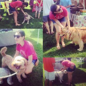 adopt-can-i-pet-your-dog