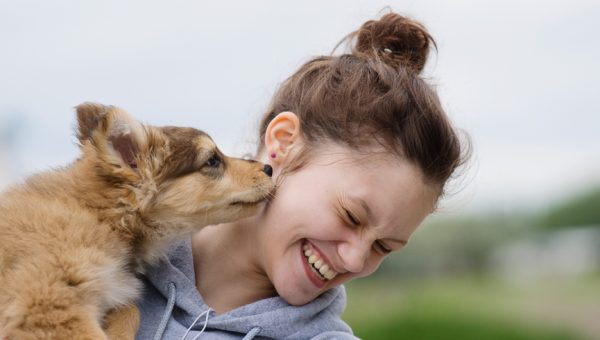 10 Signs You're Ready to Adopt a Dog
