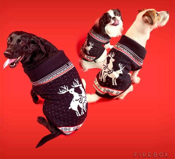 doggy style reindeer sweater