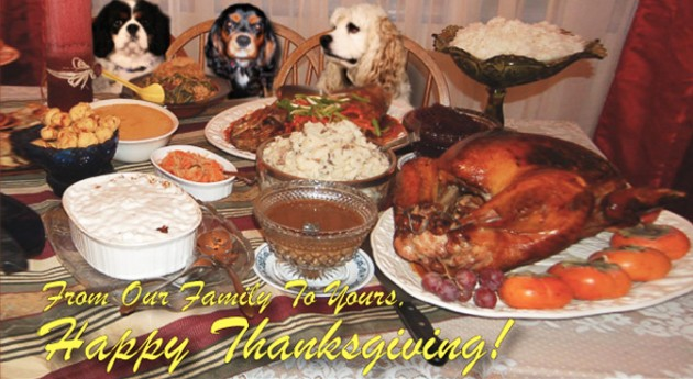 19 Tips for Hosting a Howling Good Thanksgiving