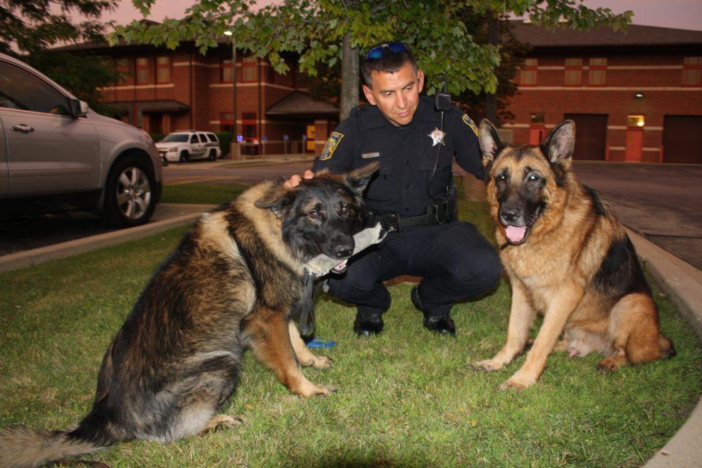 DogCity-Chicago-Officer-Phil-Mazur
