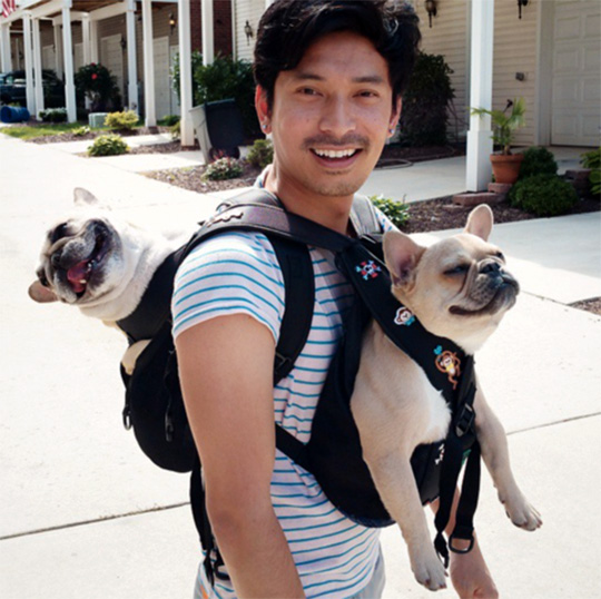 Ruffit Dog Carrier by Ruffit USA