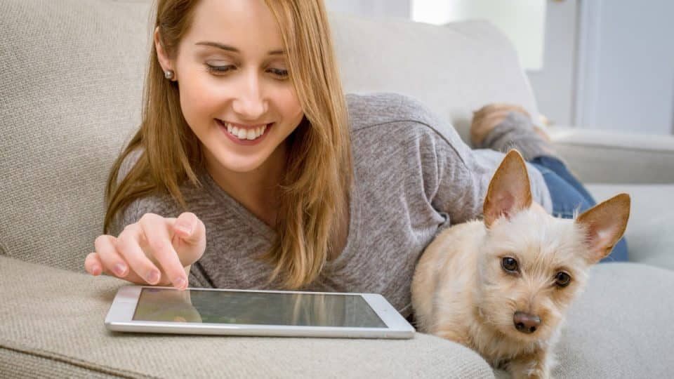The Best Dog Apps for Pet Parents in 2019 | The Dog People by Rover com