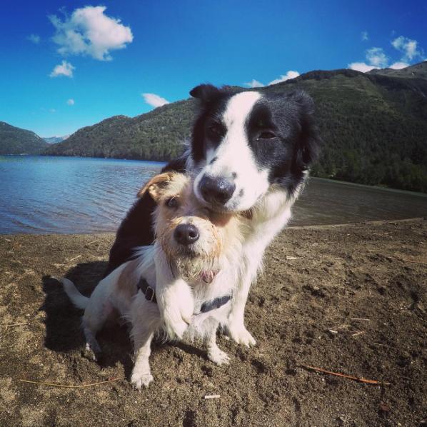 beach-hug