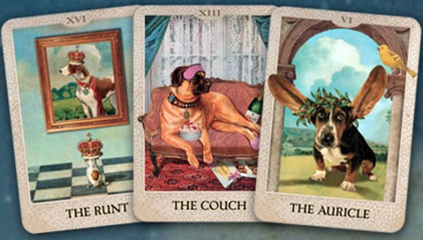 True Story: I Went to a Dog Psychic Because my Dogs Wouldn't Stop Fighting