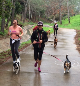 Start a new fitness routine where your dog can join in! You'll both get the exercise you need.