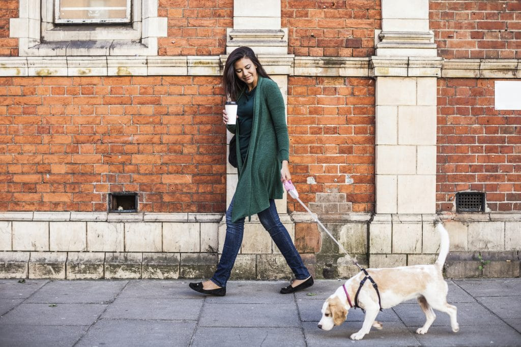 A dog walker smiles at the dog she's walking on a city street.