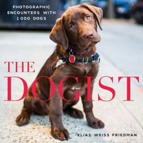 the dogist book cover
