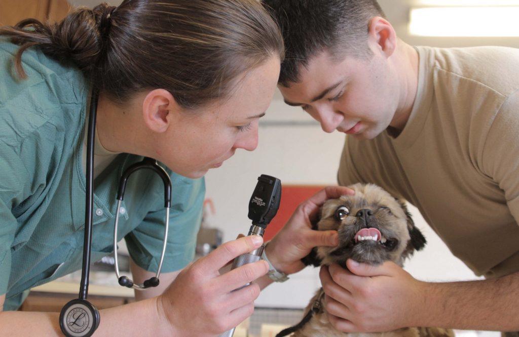 Via Flickr/armymedicine