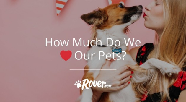 How Much Do You REALLY Love Your Pet? [Infographic]