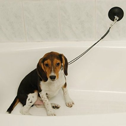dog bath tub restraint