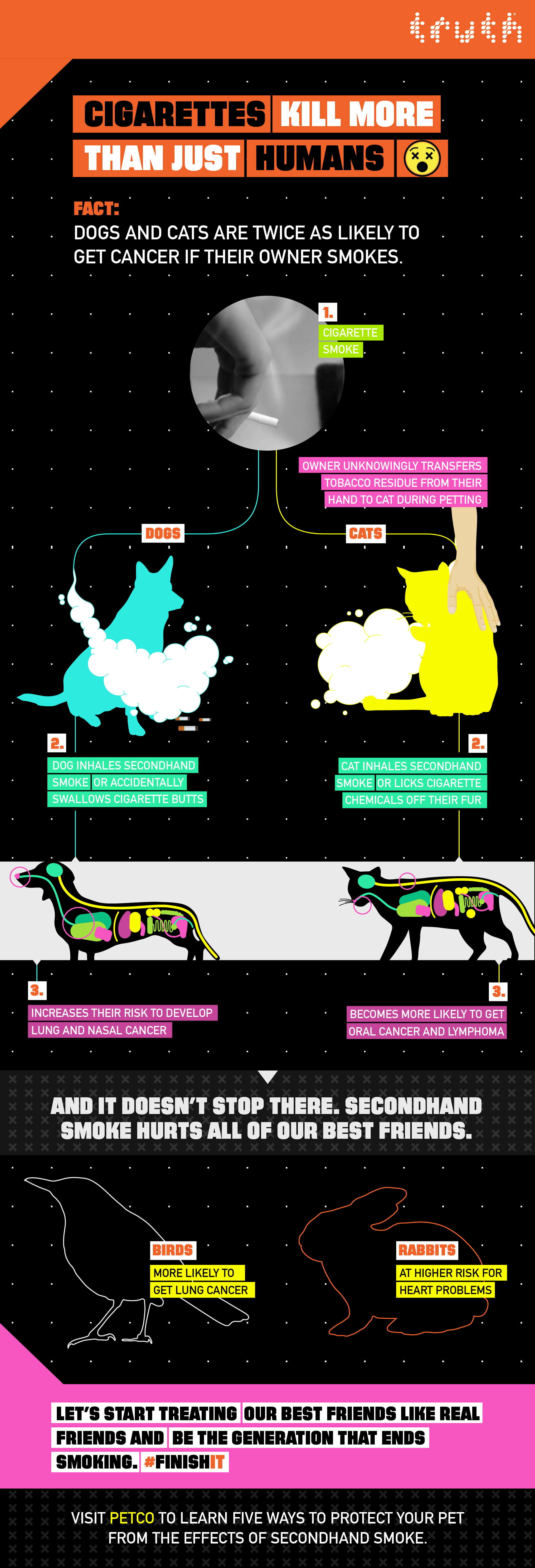 infographic_petco_dog_and_cat