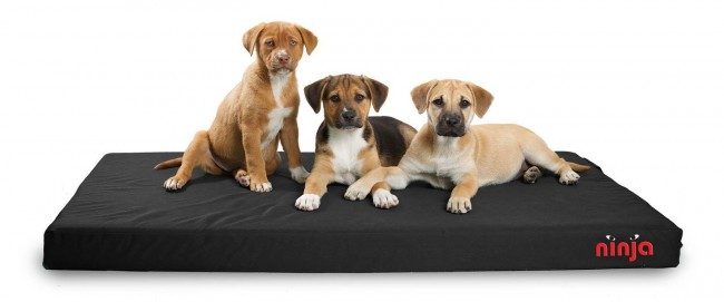 7 indestructible dog beds for chew tastic dogs the dog for Dog resistant bedding