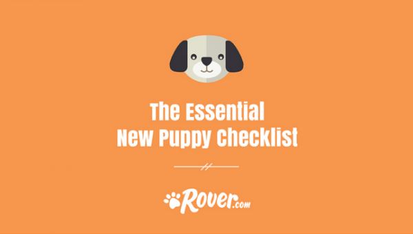 The Essential New Puppy Checklist