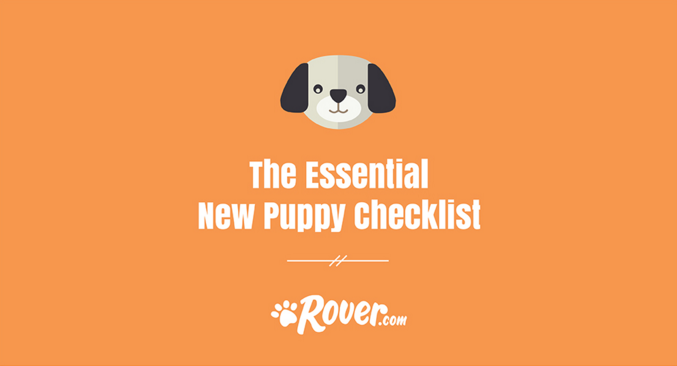 the essential new puppy checklist the dog people by rover com
