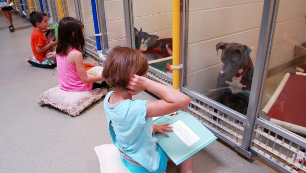 These Kids Reading to Shelter Dogs Will Make Your Day