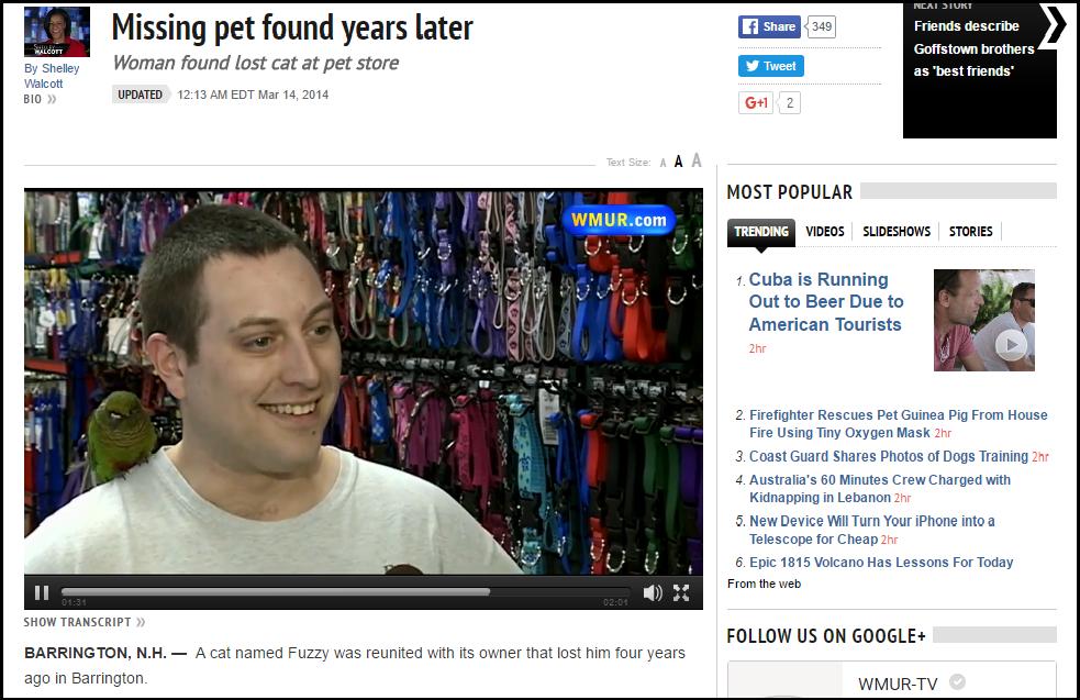 pet shop article