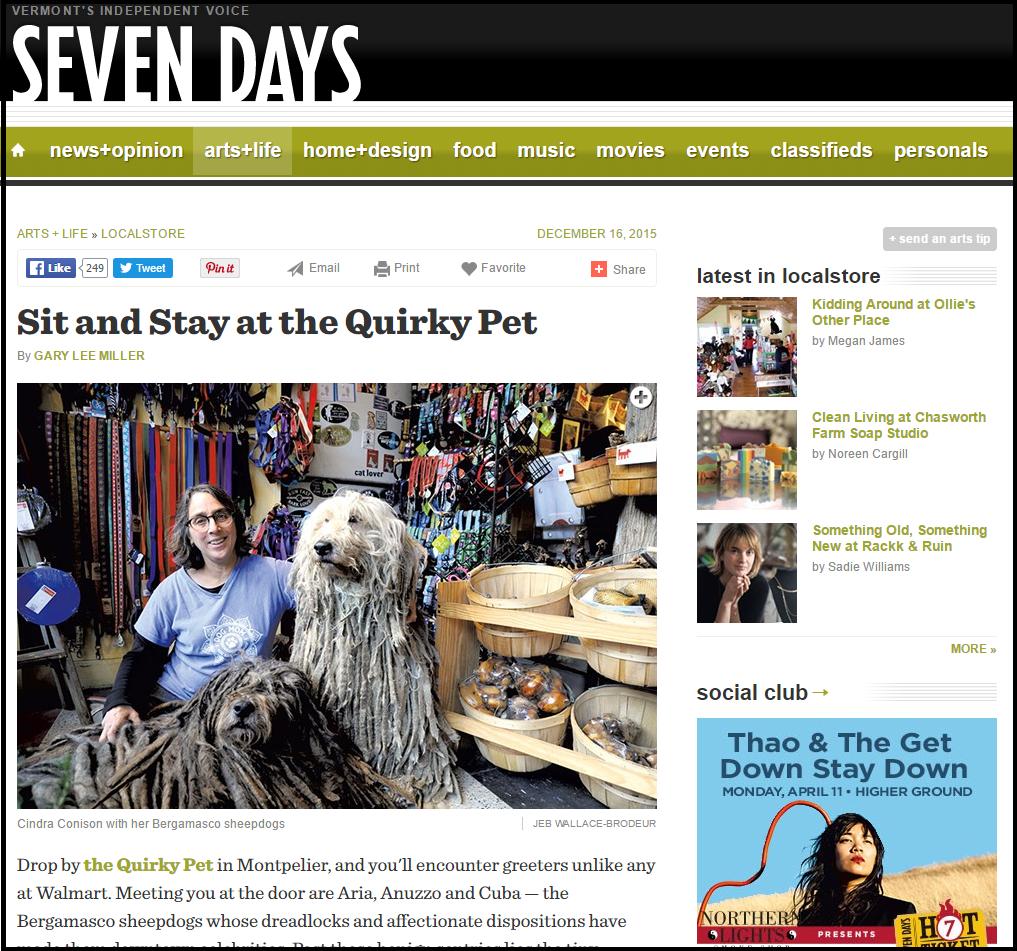 pet shop quirky pet