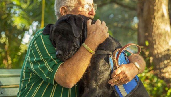 Rover.com's Guide to Pet Disaster Preparedness