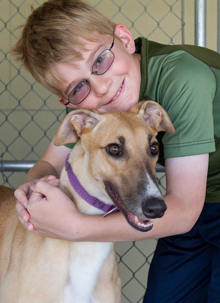 greyhound with boy