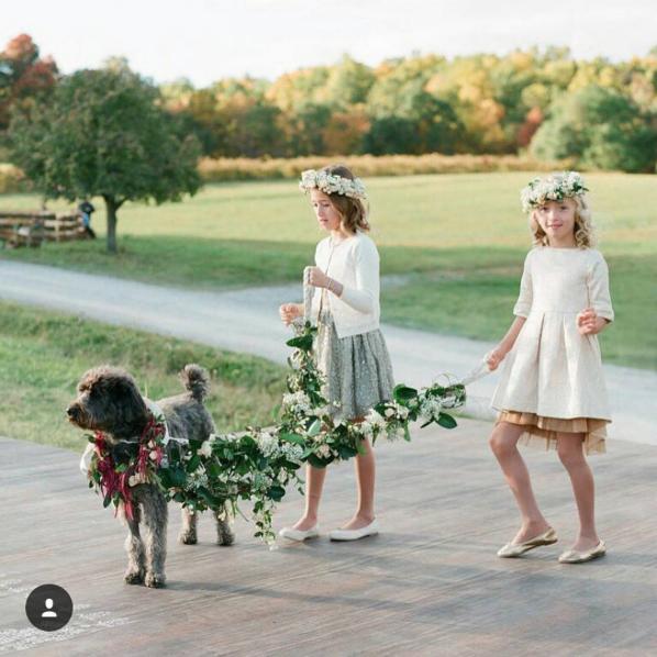 https://www.instagram.com/p/BDfkEhSuXNy/